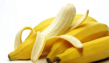 Можно ли йоркам есть бананы
